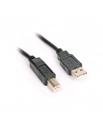 CABLE IMPRIMANTE 3M USB 2.0