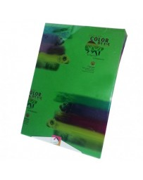 Rame Papier ROTOFORM COLOR PLUS A4 / 80G Vert