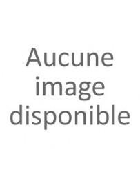 PAQUET LINGETTE NETTOYANTES BUREAUTIQUE AVEC LID